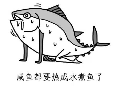 表情都要热成包吃鱼了表情系列|咸鱼都要热头蘑菇咸鱼水煮的图片