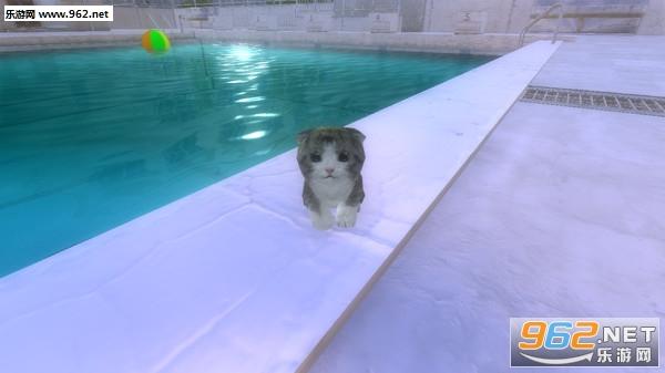 萌猫大冒险可爱的角色游戏截图6