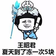 我王昭君冻一次五块钱搞笑表情包图片