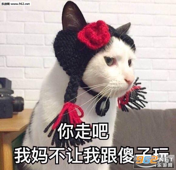 你的小可爱a出现吸猫表情很是不是期待表情包图片