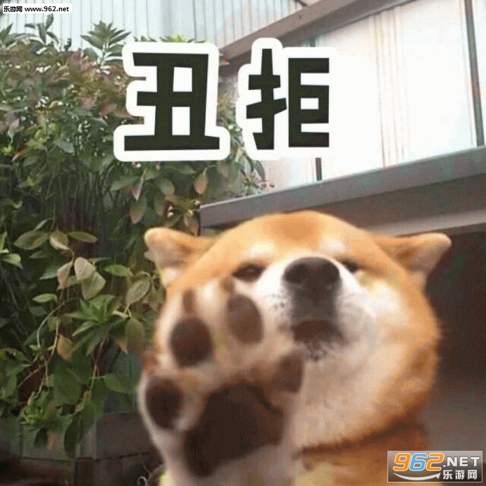 一个耿直的微笑柴犬表情包