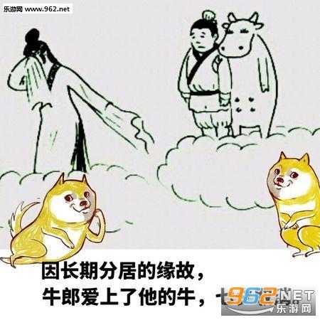 2017七夕情况狗表情表情吧看单身包图片