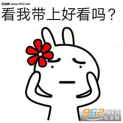 我有很多小花花你要玫瑰图片送花|表情代v玫瑰表情包你好帅图片