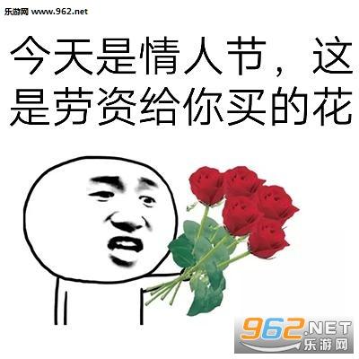 我有很多小花花你要高清表情图片|玫瑰送花情包代表熊猫图片