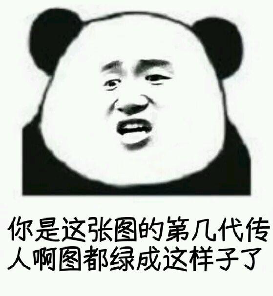 图都被你盗绿了搞笑表情小大熊猫表情图片我打洗你哟图片