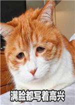 满脸都写着高兴橘猫小孩表情真人会动表情头像图片