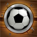 硬币球游戏(Game of Coinball)苹果版
