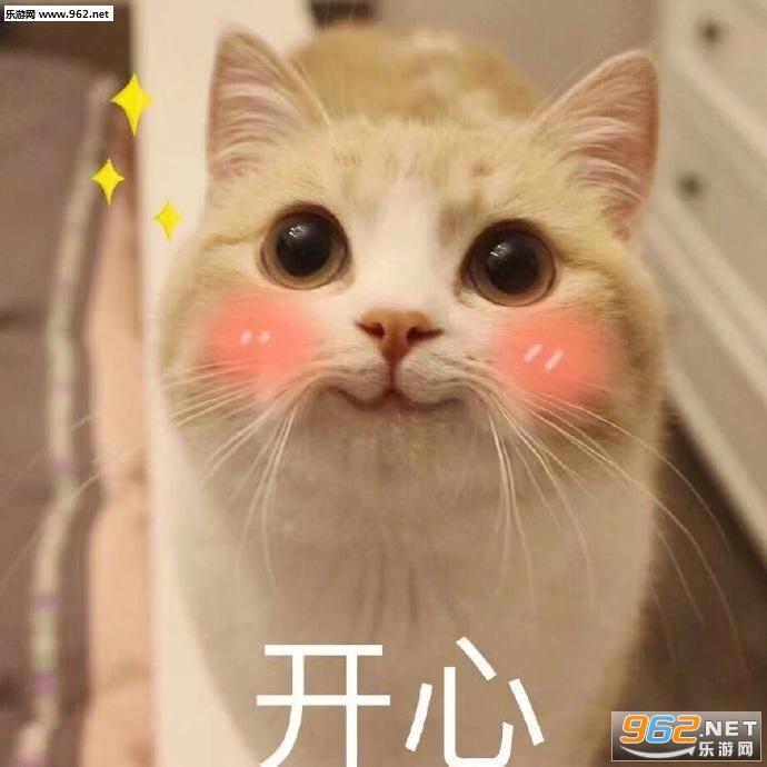 咋看上1哥了吸猫表情搞笑的说说别人评论图片图片