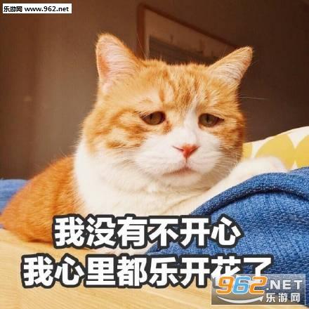 日常吸猫表情奋斗表情包搞笑图片图片