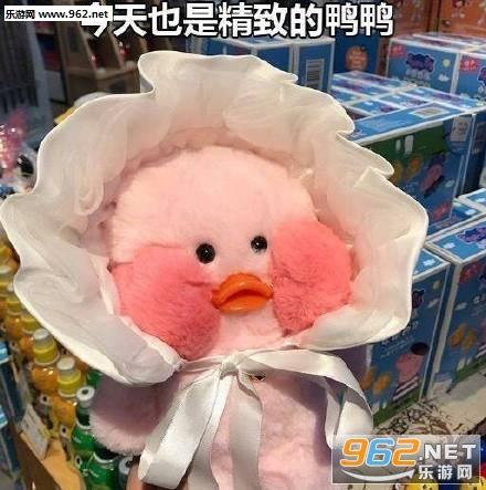 生气气玻尿酸鸭可爱表情包   【使用方法】 1,把表情包里面的图片