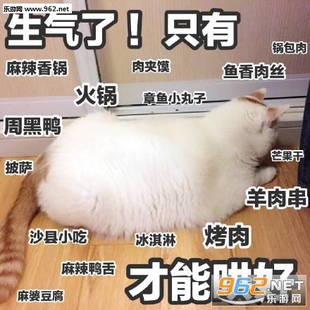 妈我饿了楼楼表情猫咪表情 我jio得阔以猫爪大图片包胃的图片