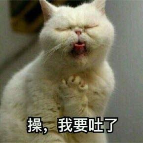 图片猫猫表情|令人作呕操我要吐了猫表情社会一块这口区包表情图片
