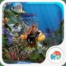 3D水族馆热带鱼动态屏保
