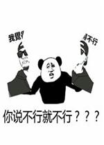 从了我吧,大佬,熊猫头竖中指,现在群里人都这么牛逼了嘛,斗图啊平时不图片