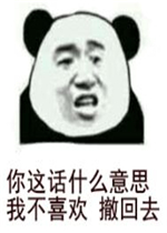 你这话表情我不撤回喜欢去熊猫头意思图的斗表情包搞笑图片