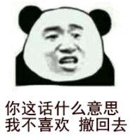 你这话什么意思我不喜欢撤回去熊猫头表情包