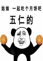 补丁 其他 → 去你妈的五仁月饼表情包   中秋节快要到了,大家在忙着图片
