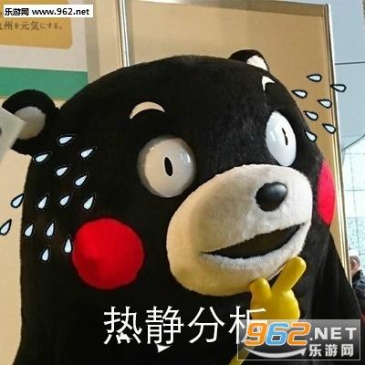 熊本熊分析系列表情包|冷静分析熊本熊表情包下载-乐图片