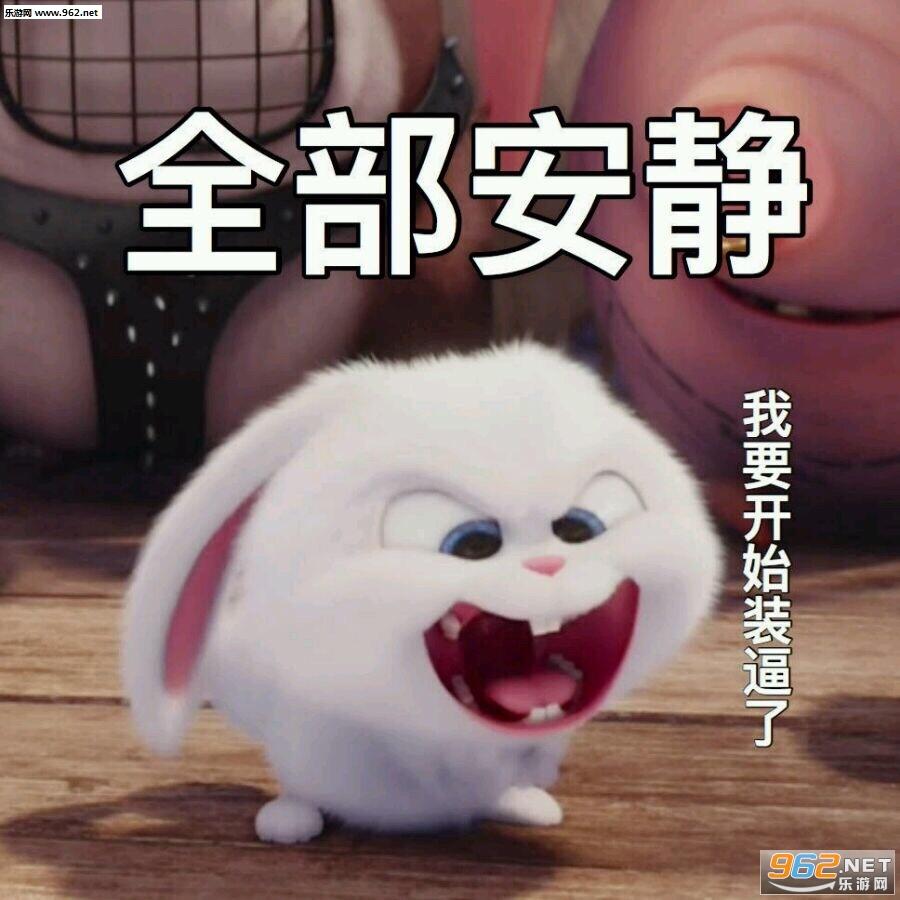 略略略略略来打我啊图片小白表情兔子|全部drake表情包NBA图片