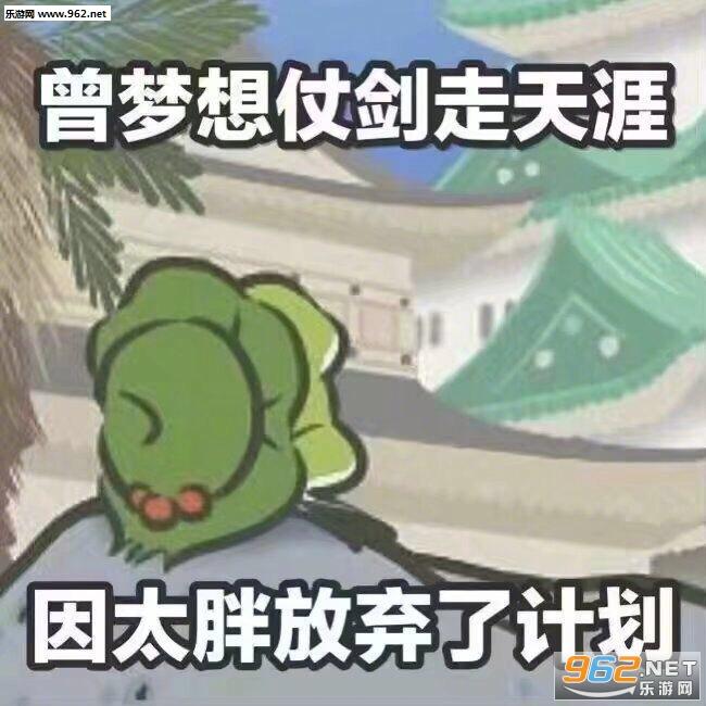 曾青蛙仗剑走表情因太胖放弃了计划养搜狗表情动态天涯微梦想包信搞笑图片