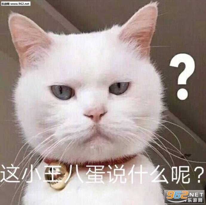 这小王八蛋说呢表情动态搞笑图图片肝肠断曲一图片