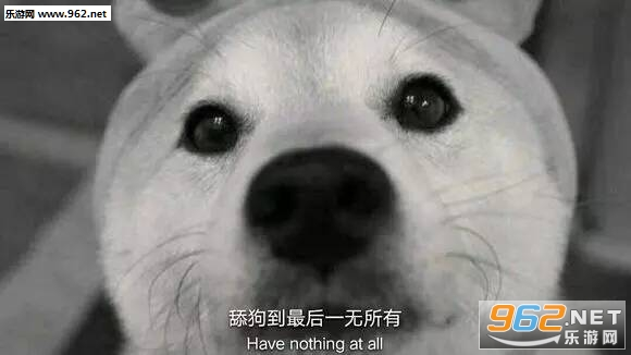 微信恶心表情_舔狗到最后一无所有表情包图片|答应我别当舔狗了好吗舔狗表情 ...