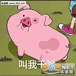 猪答道图片表情人搞笑图片吃的蛋请图片