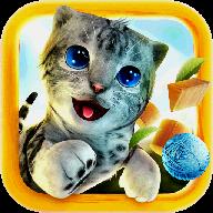 模拟猫咪官方版