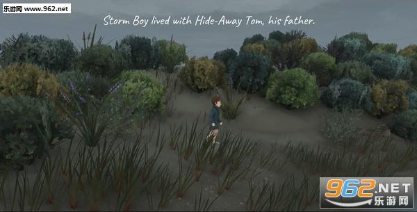 鹈鹕的故事(Storm Boy)Steam版截图1