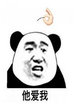 他不爱我他爱我熊猫头拔头发表情包