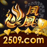2509凤凰棋牌官方版v1.0