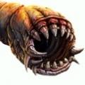死亡巨虫安卓版v1.66