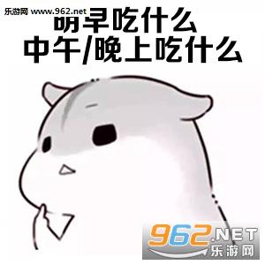 春节变胖的你表情表情猫图片包猫图片