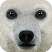 终极北极模拟器安卓破解版v1.1