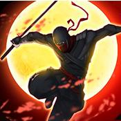暗影武士2荣耀王国安卓版v1.0