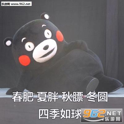 熊本熊春夏秋冬风筝表情举图片包表情熊猫开心图片