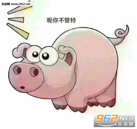 猪吃屎表情包图片