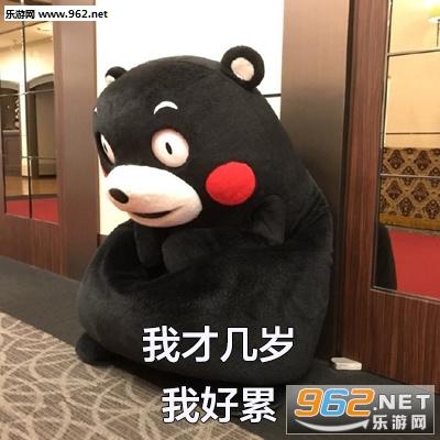 熊本熊春夏秋冬图片表情看不了手机图片qq表情包图片