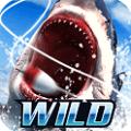 野外捕鱼模拟最新破解版