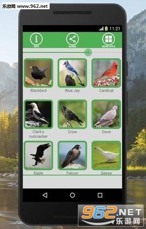 鸟声音APPv3.5_截图