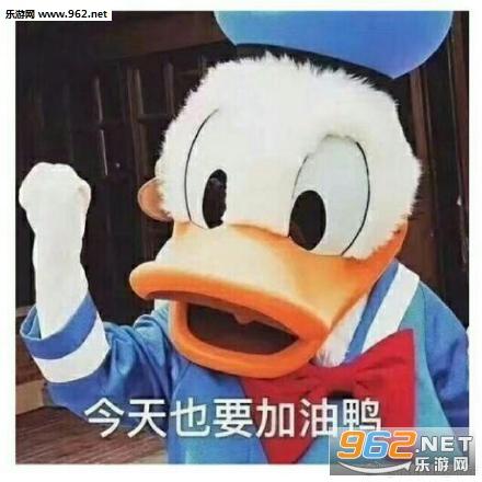 今天也要加油鸭表情举手同意赞成表情包图片