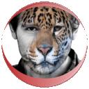 变脸自拍相机APPv3.1.1