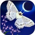 彩翼之星夜最新破解版v1.43