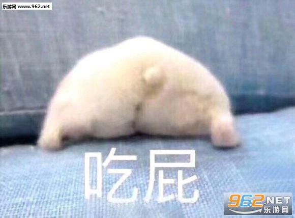 有表情个性睡你表情我要机微信图手图片