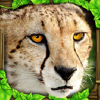 3d模拟豹子ios版