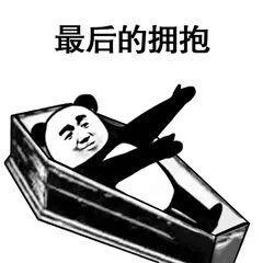 熊猫躺棺材表情包图片