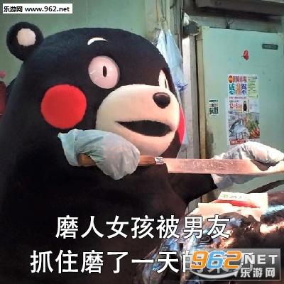 qq聊天背景 可爱熊