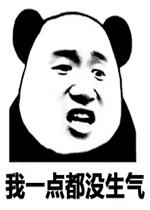 熊猫头搞笑表情包图片