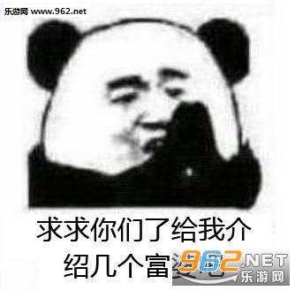 能给我介绍几个富婆吗我不想努力了熊猫头表情包图片