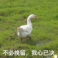 来难过鸭抽烟你鸭别快活鸭表情戴帽子喜欢表情包图片